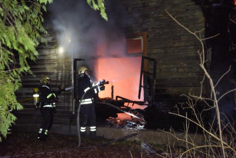 FOTOD JA VIDEO | Majapõlengus hukkus mees