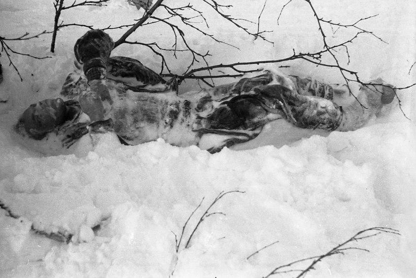 MÜSTILINE TRAGÖÖDIA MÄGEDES: 60 aastat tagasi hukkus Djatlovi suusarühm