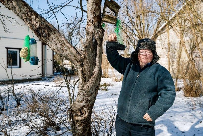 TV3 VIDEO | Metsavana hoiatab: talv kestab veel pikalt
