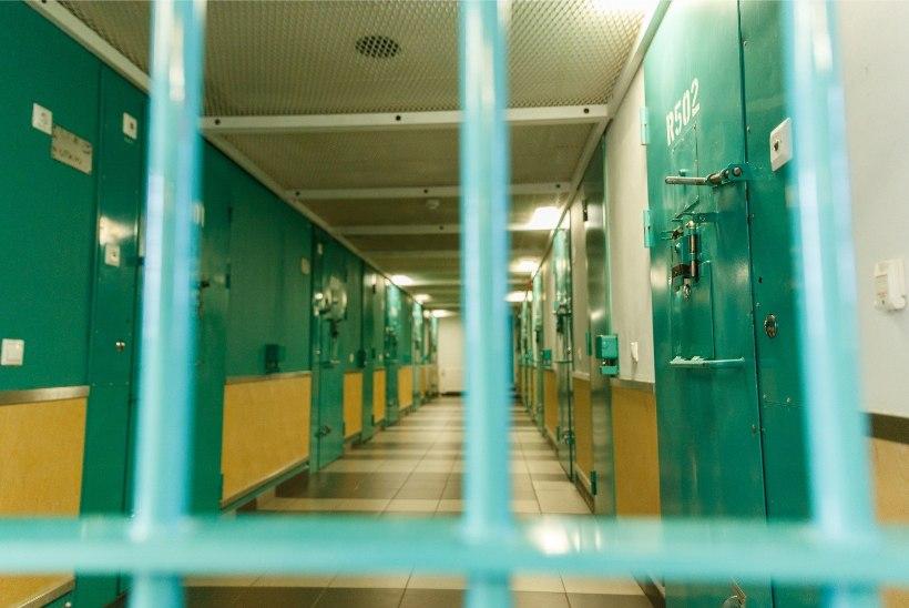 Seksuaalkurjategijate karistused karmistuvad
