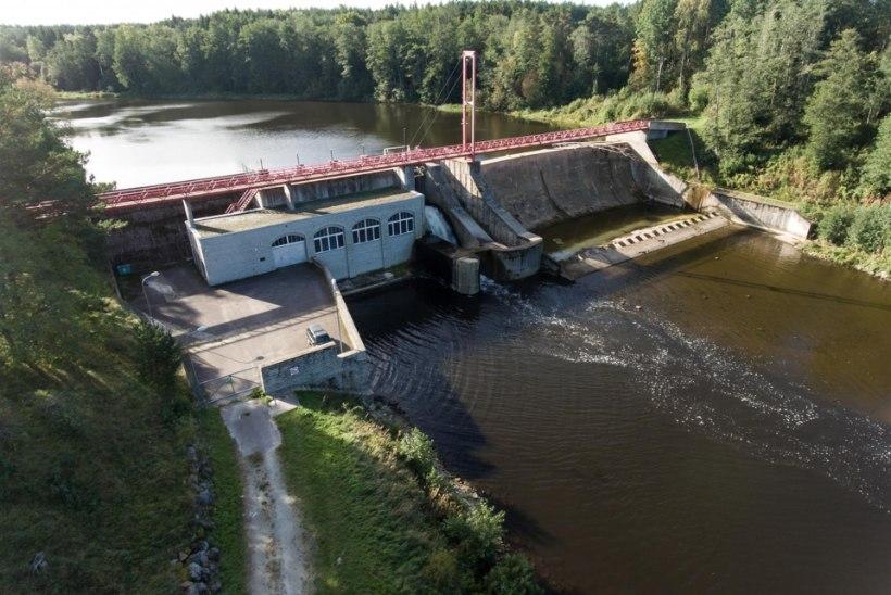 Küsitlus: kuidas kavatsevad erakonnad Eesti kalarikkusi kaitsta?