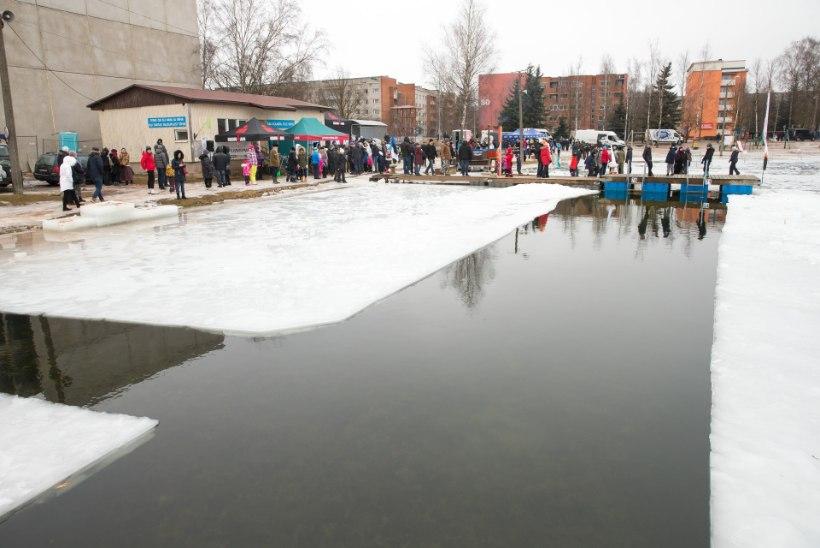 GALERII | Pingviinide paraadi talisuplejad ujusid Eesti nimel jalad ees