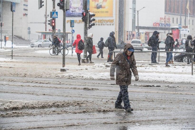 Valimispäevaks lubatakse lund ja lörtsi