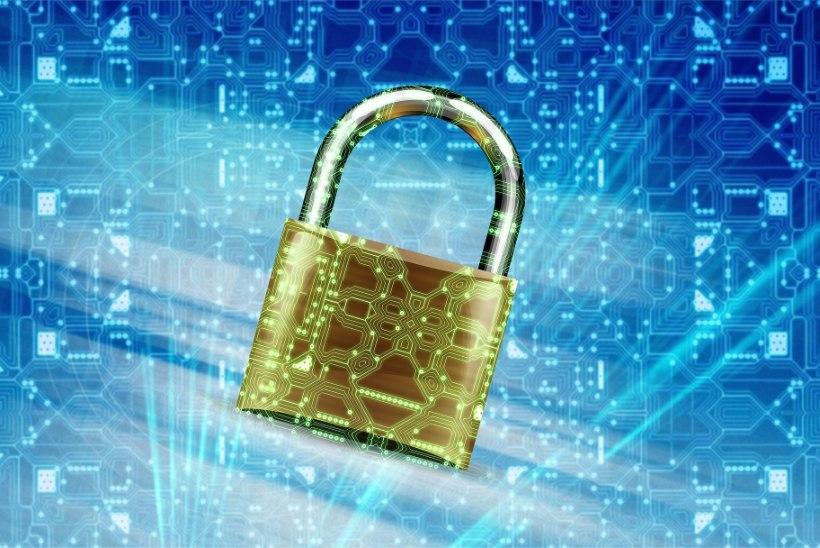Internetti pole vaja karta, kuid sealseid ohte tuleb vältida