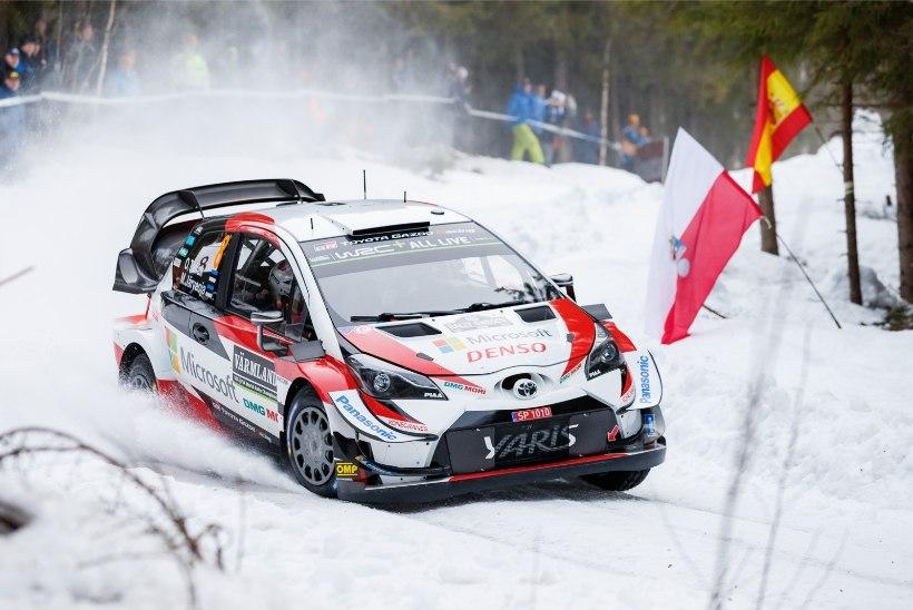 Rootsi ralli võib lumepuuduse ja korraldajate jäärapäisuse tõttu MM-sarjast kaduda