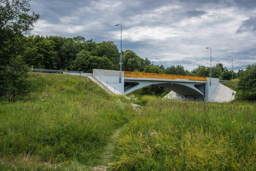 Kuidas Pirita sillast ehitati maja