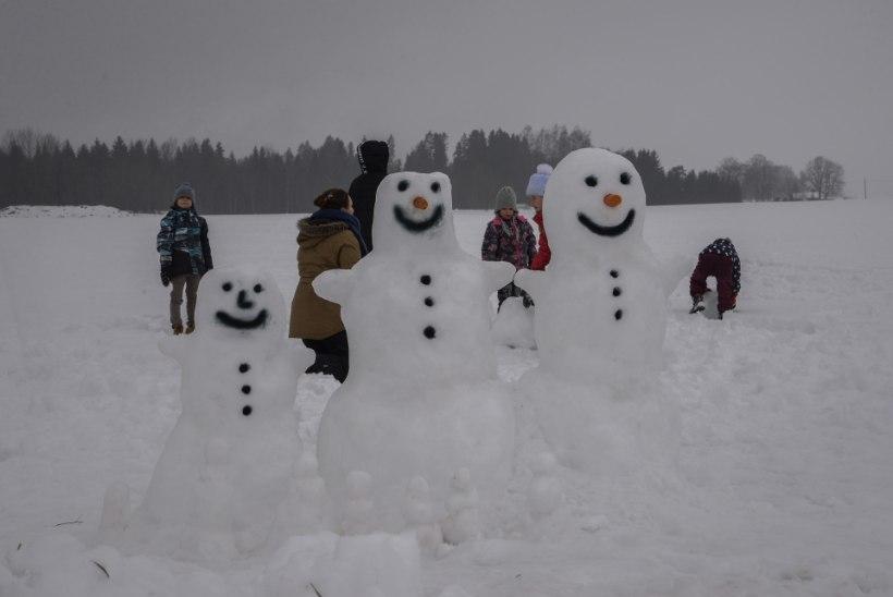 GALERII JA VIDEO | UHKE PARAAD: Väätsal püüti teha lumememmede maailmarekordit!