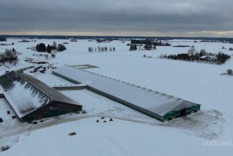 TV3 VIDEO | Raplamaal avati Kaiu Farmi 3,5 miljoni euroga valminud juurdeehitus
