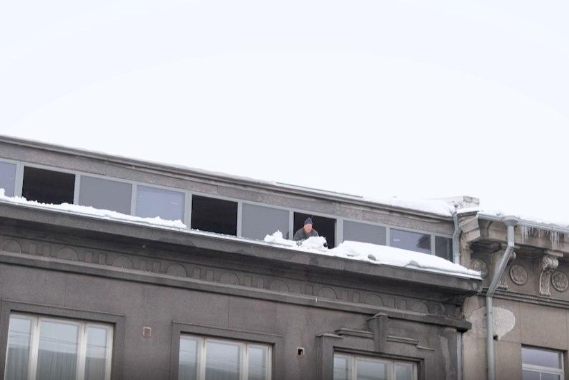 ÕL VIDEO | Nii ei tehta! Mees lükkab karniisilt lund, jalakäijad varjuvad