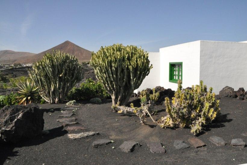 Laavakivist kaunitar Lanzarote