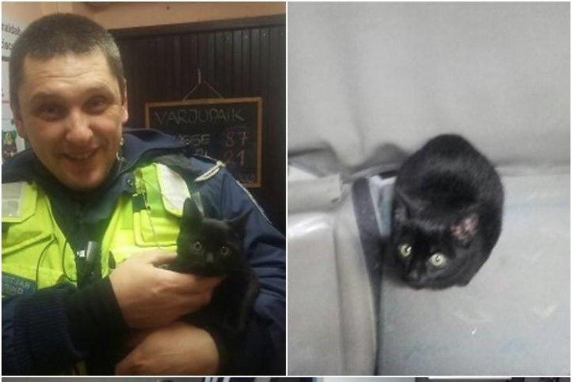 ARMAS! Lumehanges külmetav kassipoeg ronis politseiautosse sooja