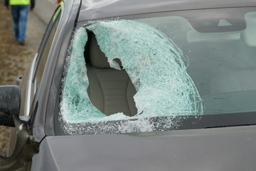 FOTOD   Jõgevamaal hukkus sõidukilt löögi saanud 12aastane poiss