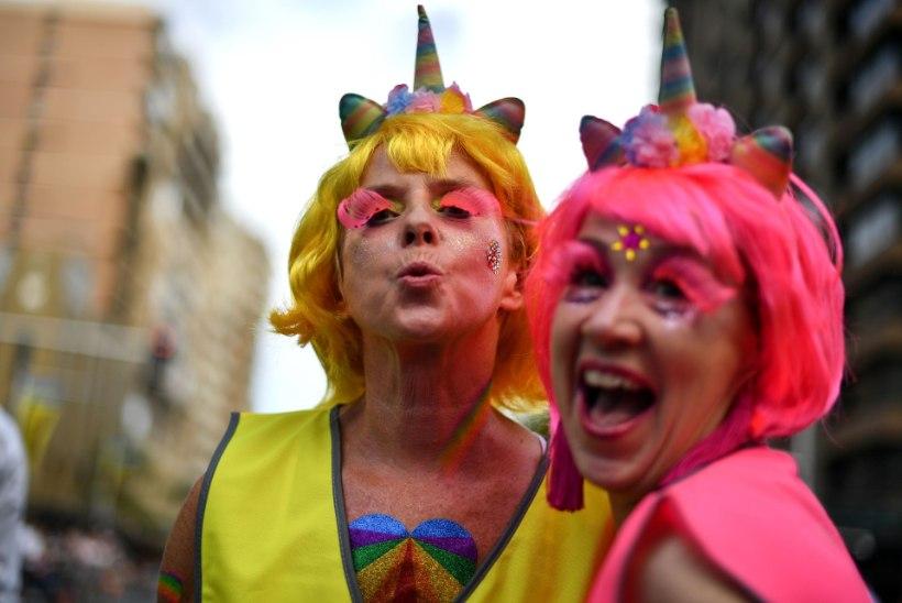 Германия выплатит компенсации геям