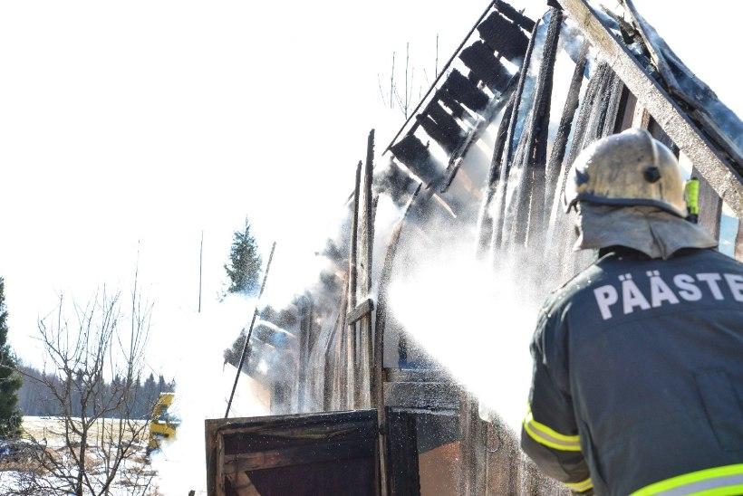 Omanik palus, et voolikutega ringijooksvad tuletõrjujad laseksid hoonel rahulikult põleda!