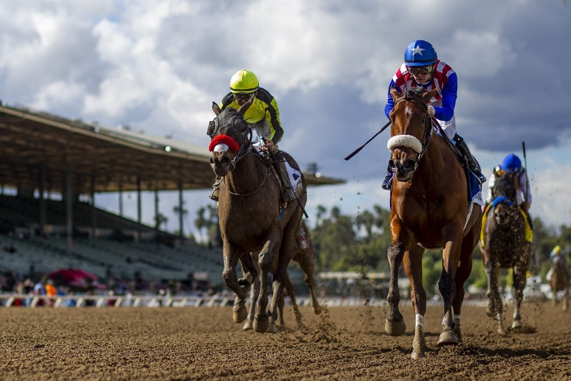 Paari kuu jooksul suri juba 22. hobune – kas ajaloo suurim dopingutragöödia?