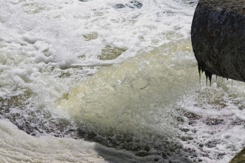 Põleva jõe kalad tunnistati söömiskõlbulikuks