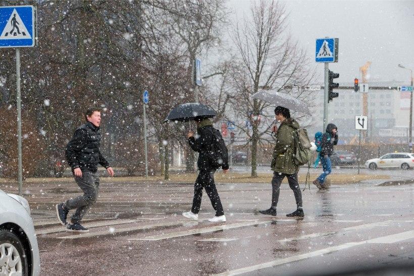 NUTA VÕI NAERA: uus nädal toob vihma- ja lörtsisaju