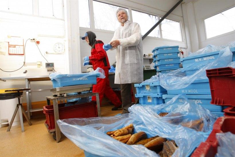 Küsitlus: kuidas Taani kalaskandaal teie tarbimisharjumusi mõjutas?
