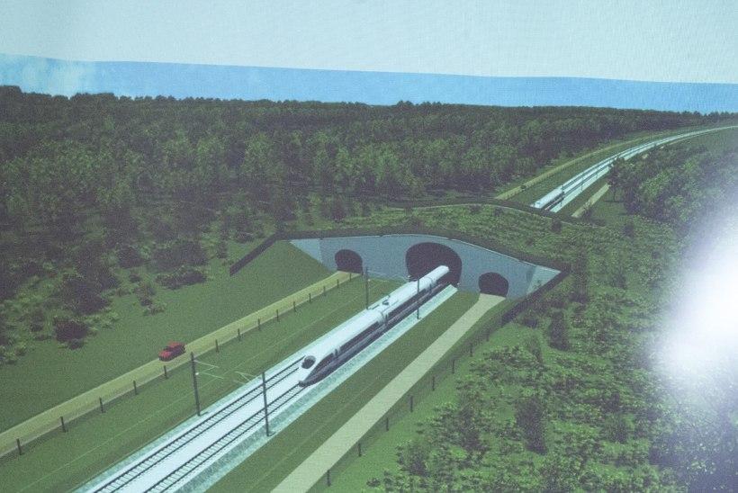 Looduskaitse selts käib Rail Balticu trassi pärast kohut