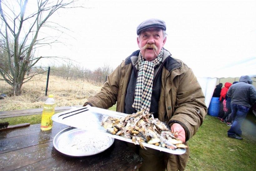 Maaeluminister: igal perel võiks olla oma kalur