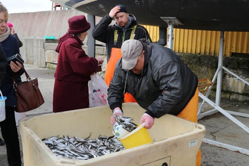 KAS SINUL JUBA ON? Maaeluminister Tarmo Tamm: igal perel võiks oma kalur olla