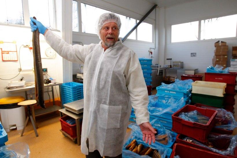 Kas Eestis müüdav kala on ikka värske? Suurim kalakaupmees räägib äri telgitagustest