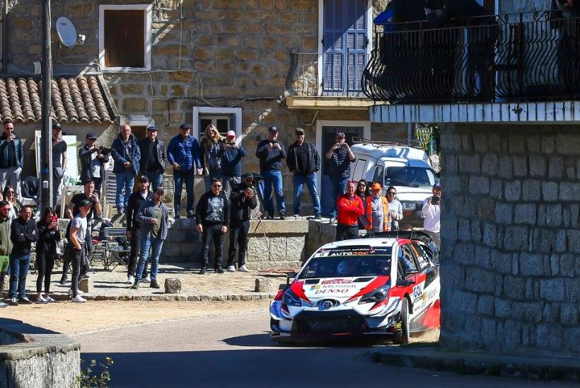 Korsika ralli draama! Võimsalt kihutanud Evans lõhkus viimasel katsel rehvi, Tänak lõpetas positiivsel noodil