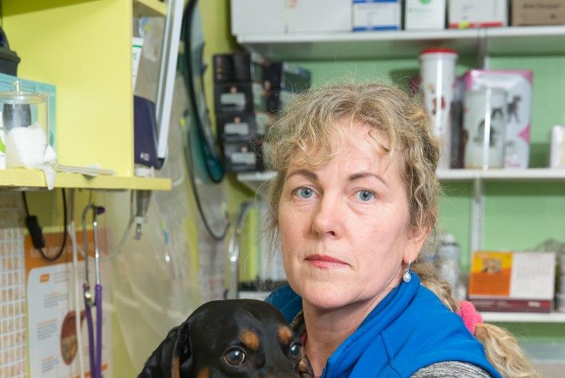 JÄRJEKORDNE HULLUS: koerte vaktsineerimisest keeldumine pole Eestisse veel jõudnud