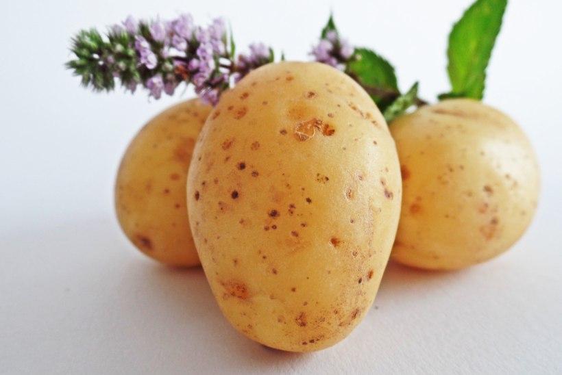 KAAL AINA KERKIB? 8 tuttavat toitu, mis annavad kaalulangetusele hoogu juurde