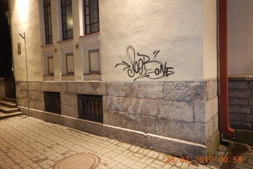 FOTOD JA VIDEO | Mupo patrull püüdis kinni Tallinnas seinu sodinud noortekamba liikme