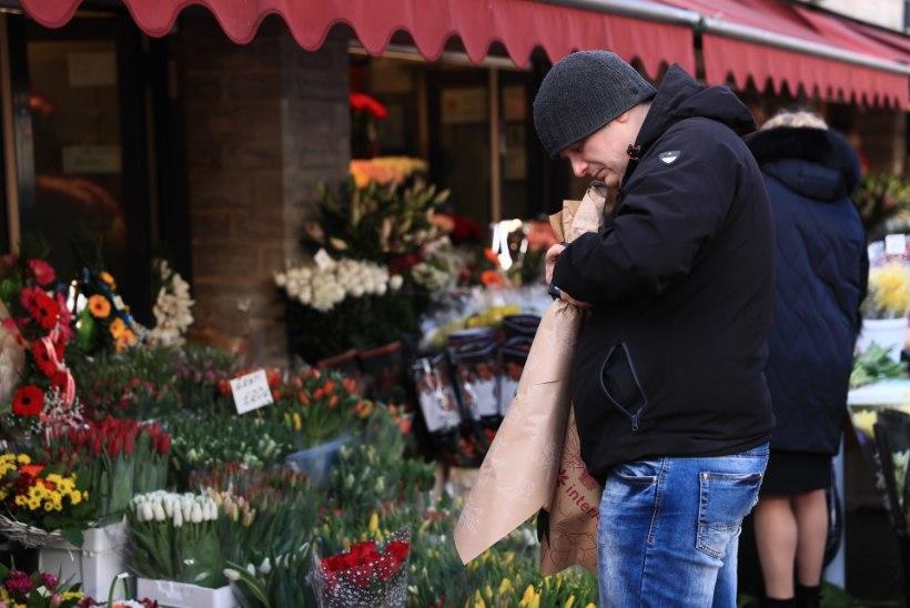 GALERII | NAISTE NIMEL: mehed tunglevad Viru lilletänaval ilusamate õite eest
