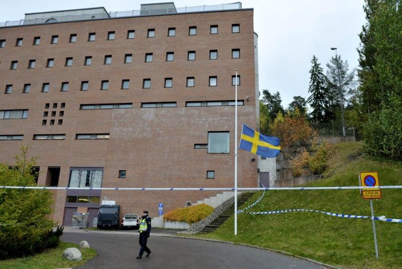 TÕSINE RUUMIPUUDUS: Rootsi vanglates napib kohti