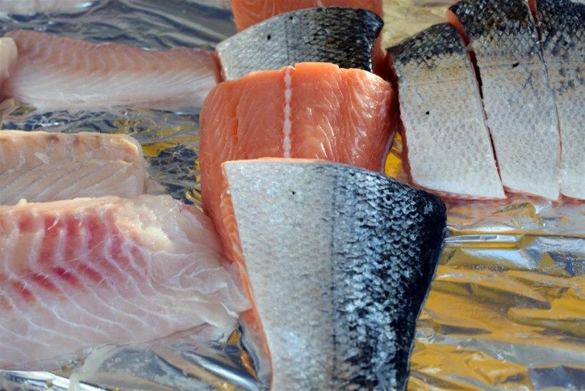 Test: kui värske on müüdav kala?