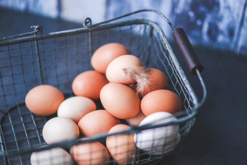 Kõhukinnisus ja kõrge kolesteroolitase: kas lihavõtete ajal peaks munade söömisega piiri pidama?