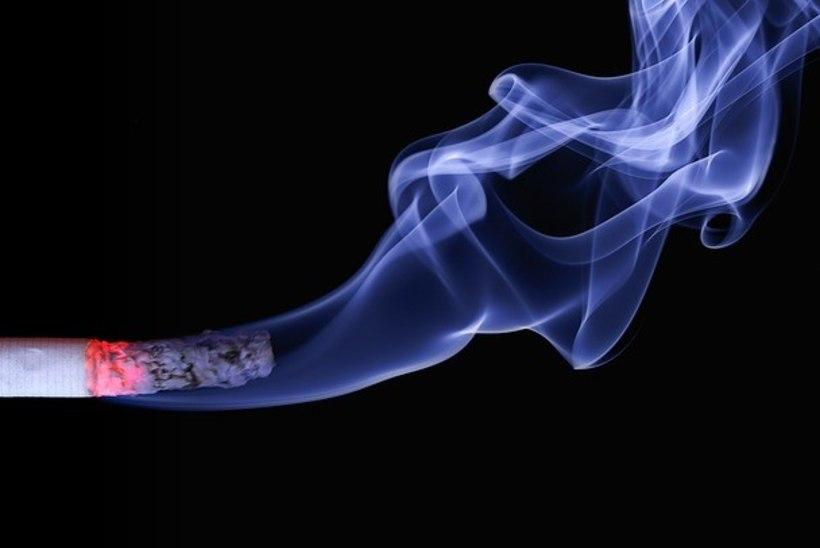 Sigareti kustutamisest keeldunud mehe pärast tehti hädamaandumine