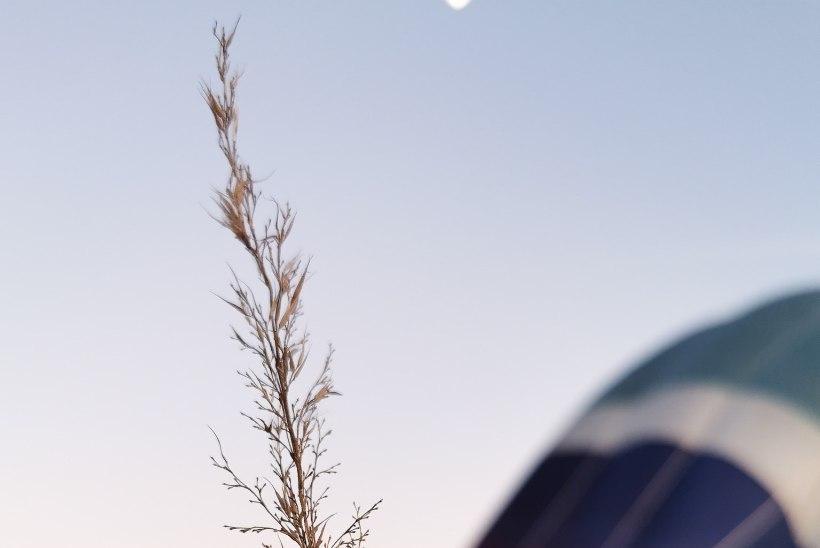 FOTOD | Nutitelefoni kaamera pandi proovile üle 300 meetri kõrgusel