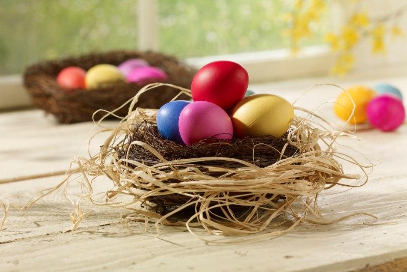 TOITUMISTEADLANE SELGITAB: mis juhtub, kui süüa pühade ajal mitu muna päevas?