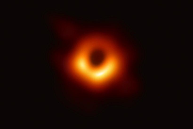 Selge pilt – see ongi must auk! Aga mis selle pildi ikkagi nii eriliseks teeb?