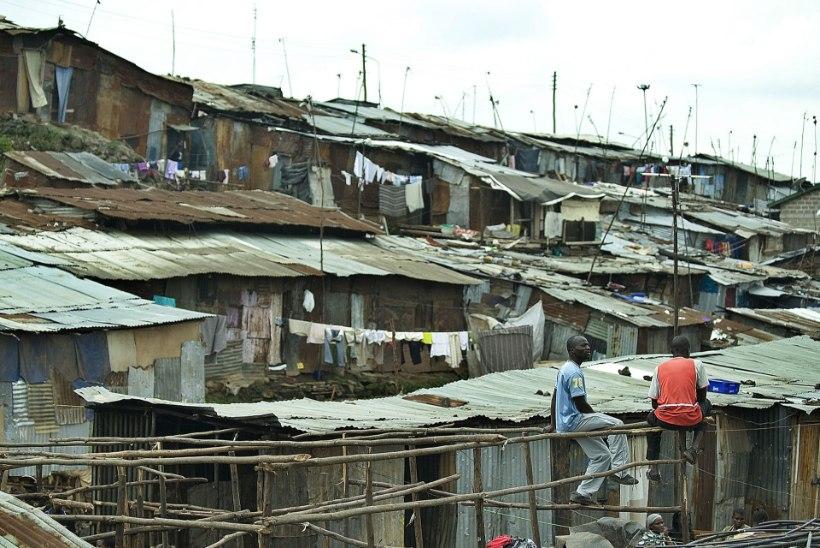 Maailma rahvaarv tõusis 7,7 miljardini, langus algab 2100. aasta kandis
