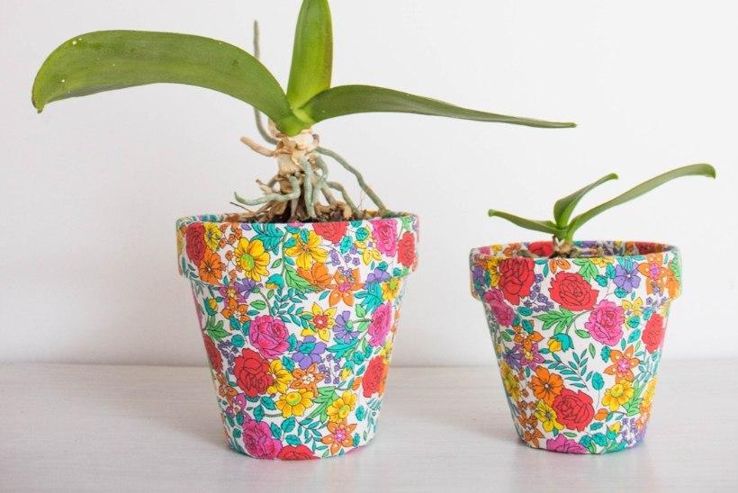 Lisa toale särtsu kevadiste lillepottidega!