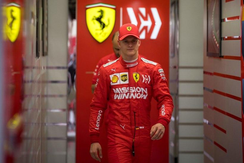Mick Schumacheri suur väljakutse: tõestada, et käbi ei kuku kännust kaugele