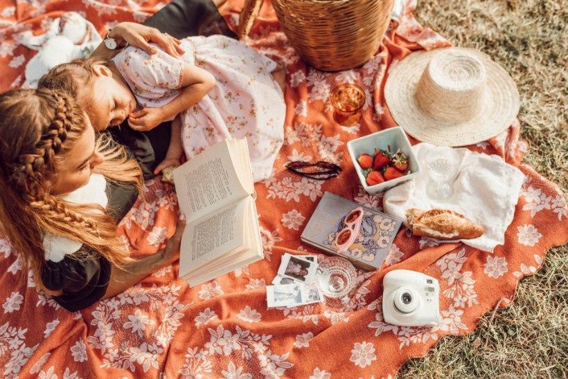 Vahva mõte: mine perega piknikule