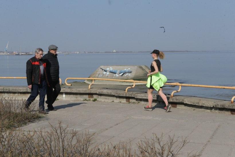 FOTOD | Tallinna lahte tekkis vahva kunstiteos