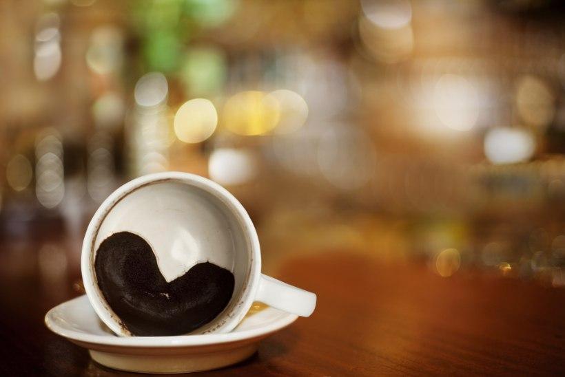 MIDA PÄEV TOOB? Tallinnas tutvustatakse äppi, mis aitab kohvipaksu pealt ennustusi lugeda