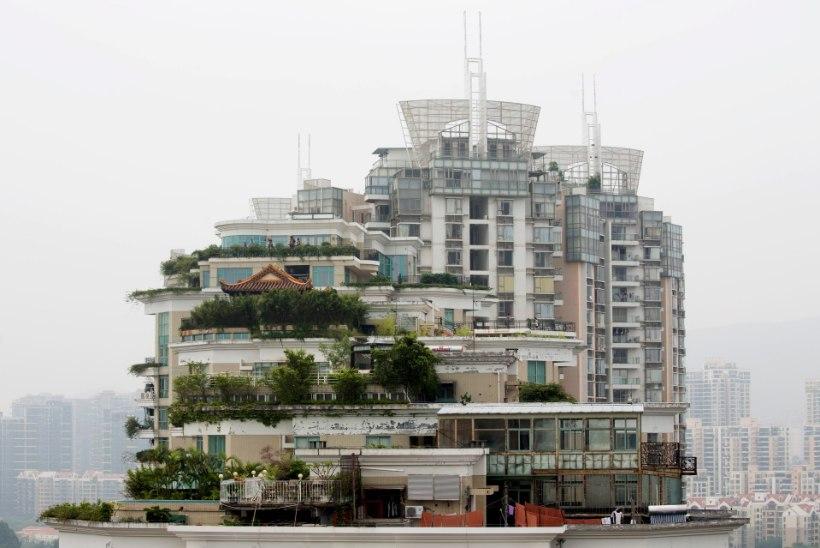Katuseterrassi kujundades tuleb arvestada kliimaga