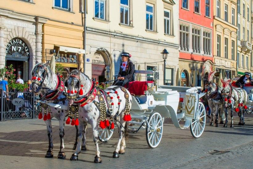 Sihtkoht sõltub sünniaastast: kahekümnesena pidutse Berliinis, neljakümnesena logele Korful ja kuuekümnesena põruta Prahasse