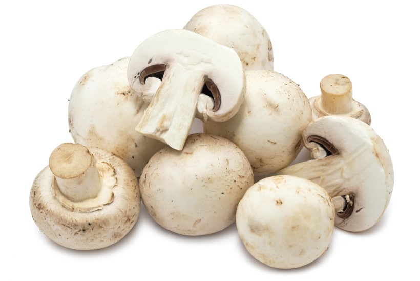 RETSEPTINURK | Poodi seenele! Vanade heade šampinjonide kõrvale on lisandunud mitmeid põnevaid sorte