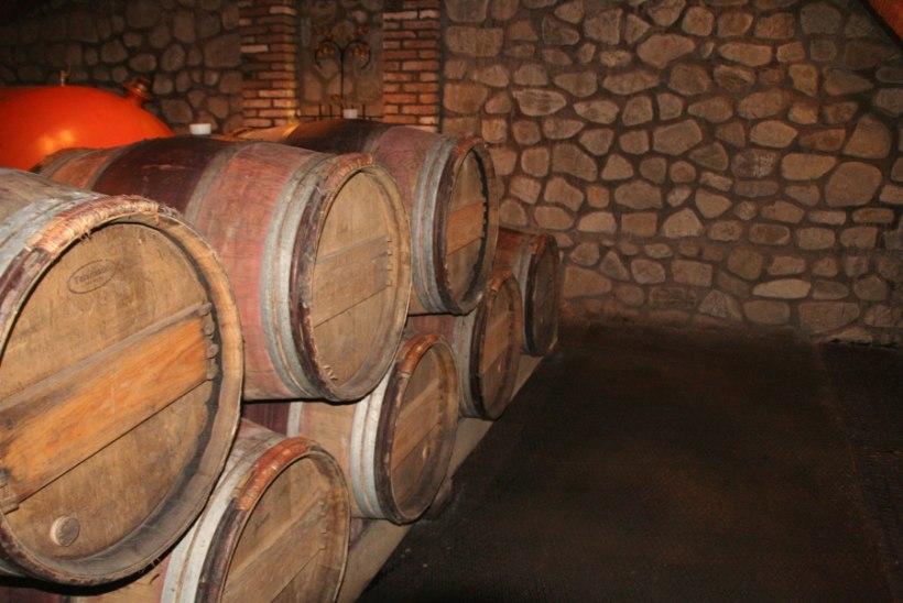 PÄEVA KASUTU FAKT | Keemiarelvana läks keskajal käiku ka vaatide viisi veini