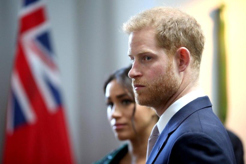 Prints Harry tahaks maailma populaarseima videomängu ära keelata