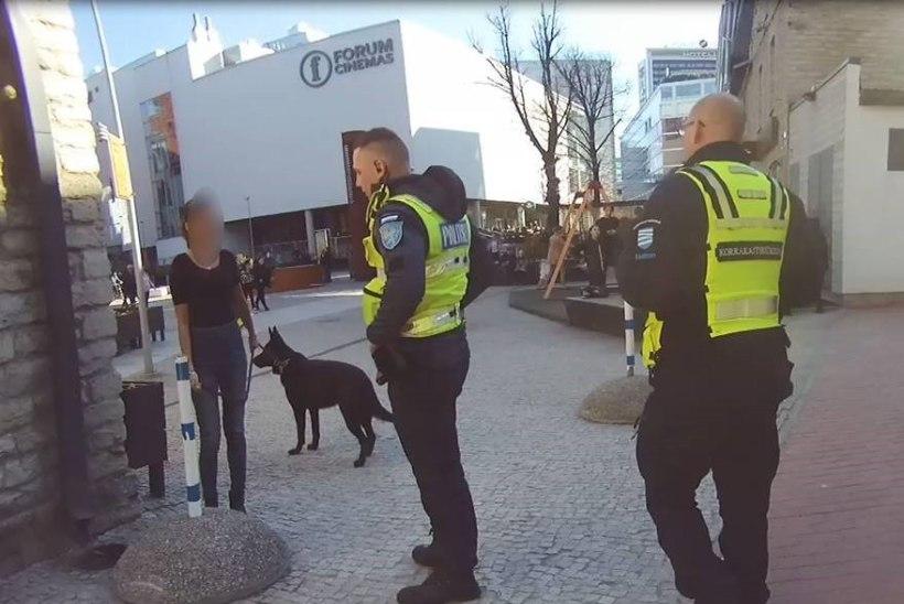 VIDEO JA FOTOD | Purupurjus ja agressiivne koeraomanik viidi kainenema